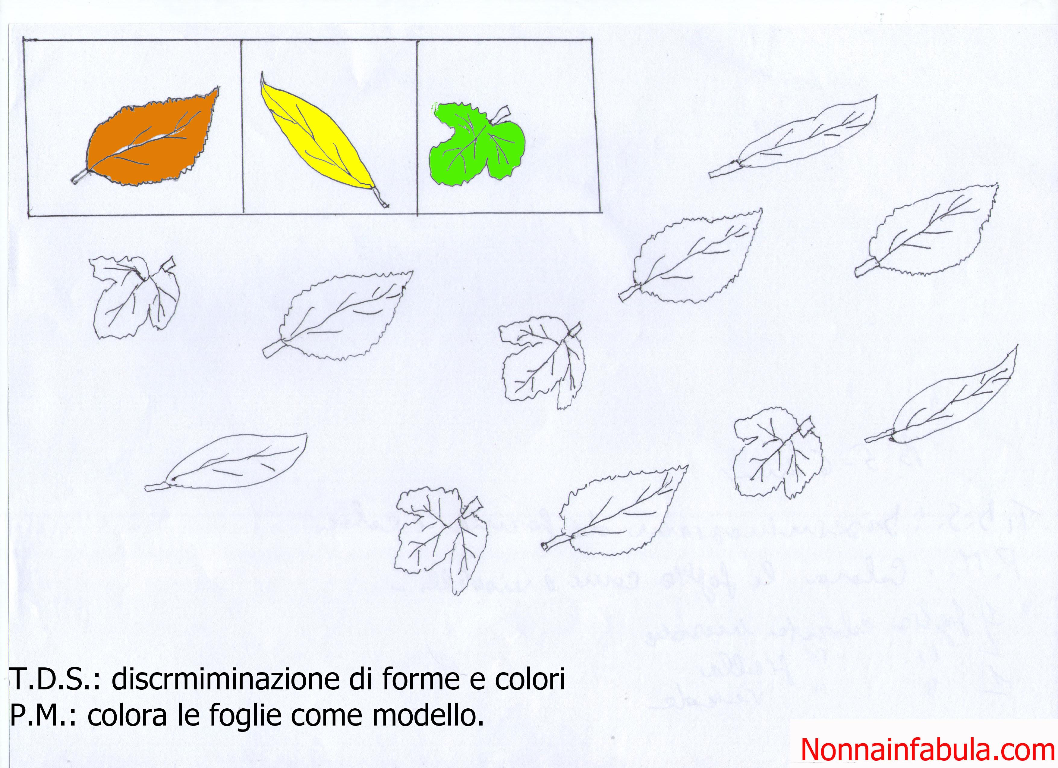 Le stagioni scuola infanzia schede um55 regardsdefemmes for Addobbi autunno scuola infanzia