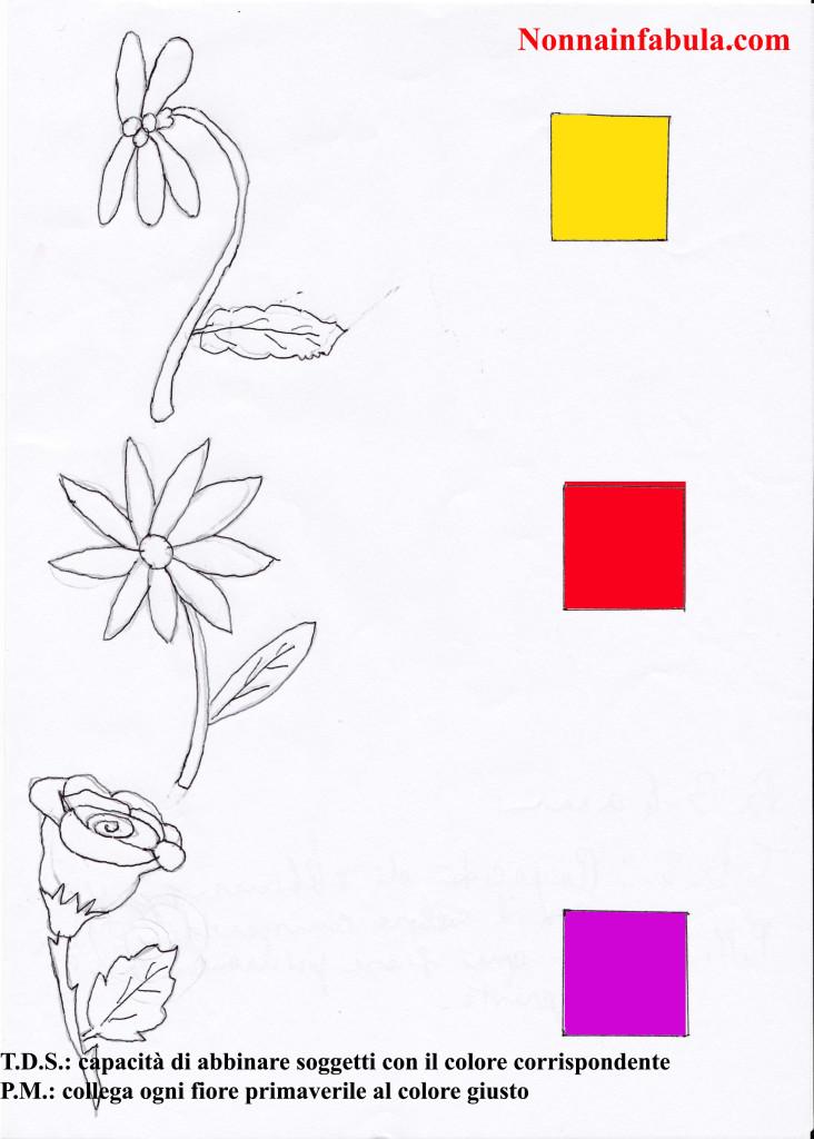 fiori color