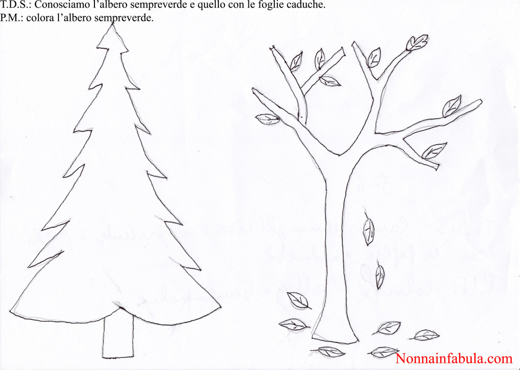 Progetto natale per bambini di 5 6 anni rivolto agli for Schede didattiche natale scuola dell infanzia