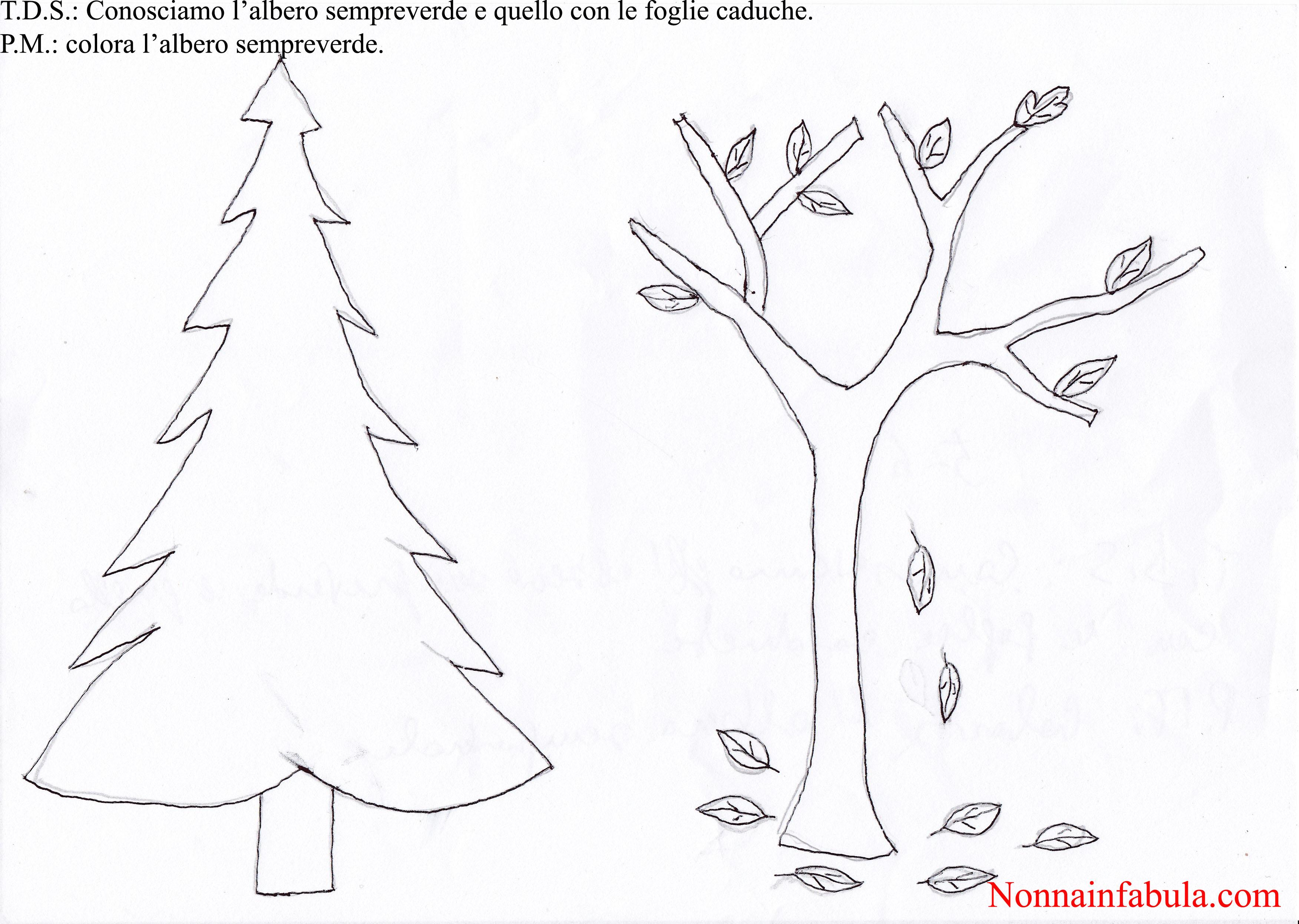Progetto natale per bambini di 5 6 anni rivolto agli for Schede didattiche natale scuola infanzia
