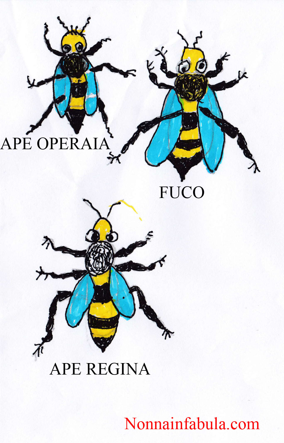 diverse-api